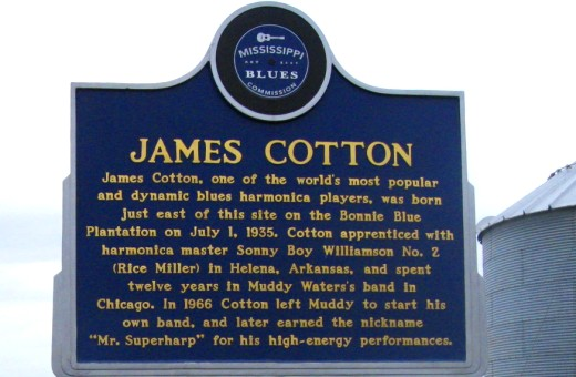 james cotton blues marker